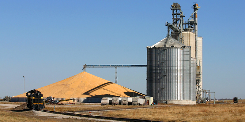 corn pile at grain elevator