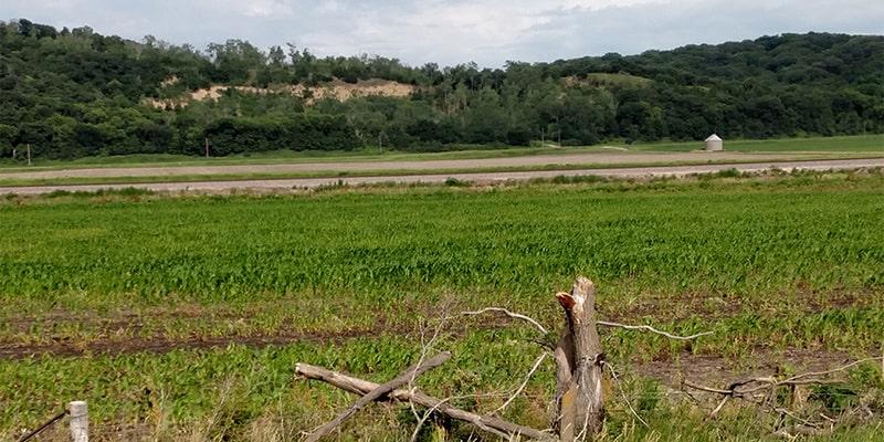 crop-photo