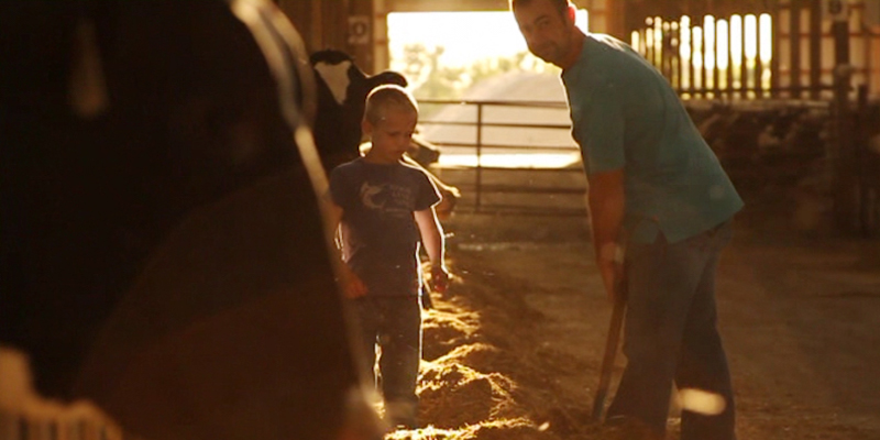 dairy farmer with son