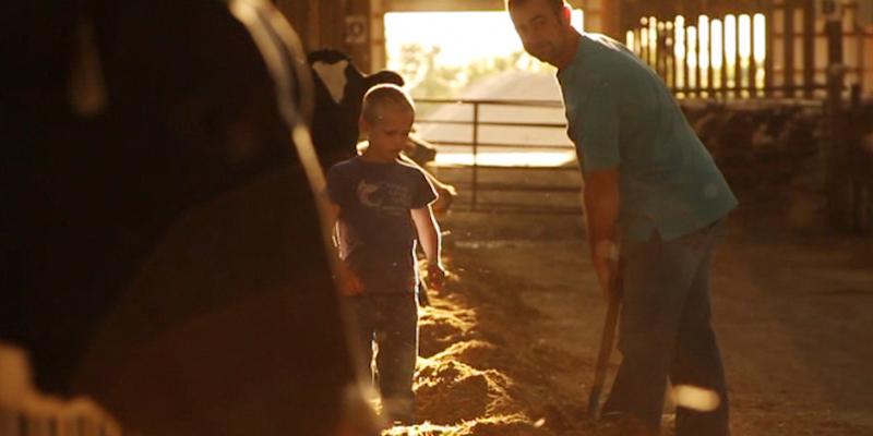 dairy farmer with son