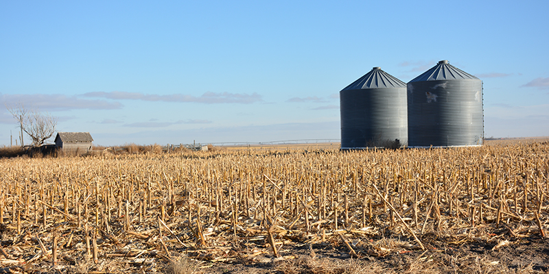grain bin winter