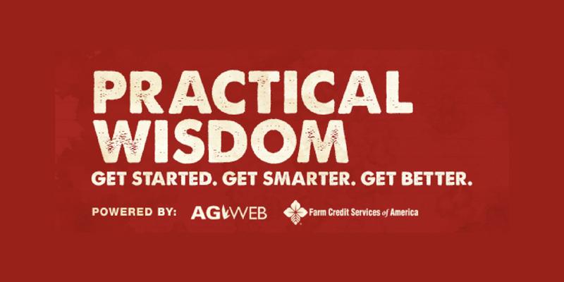 practical wisdom banner