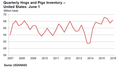 hogs and pigs inventory