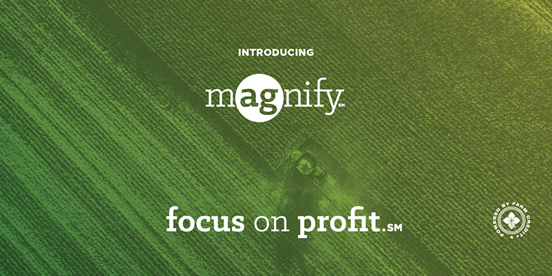introducing Magnify