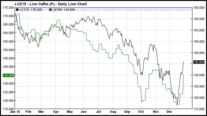 Live Cattle - Daily Line Chart